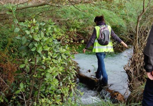 Adxudicación provisional do proxecto de recuperación integral do río Arlés e a súa contorna