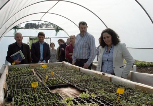 A delegada territorial da Xunta visita as hortas e  invernadoiros da Sementeira