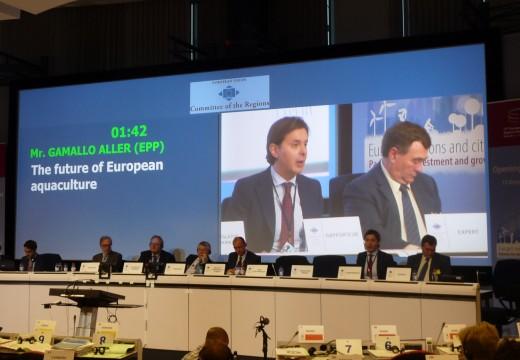 O Comité das Rexións aproba o ditame sobre o futuro da acuicultura europea liderado por Galicia