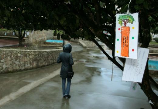 Os nenos e nenas do CEIP Campomaior conmemoran o Día da árbore