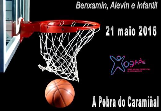 Campionato Provincial de Baloncesto