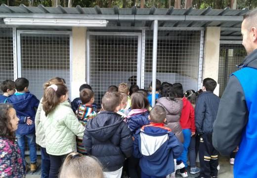 O programa 'Un can, un amigo' achega aos nenos e nenas do Castelao á canceira de Ordes