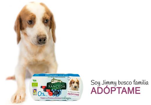 Iogures para fomentar a adopción de cans abandonados