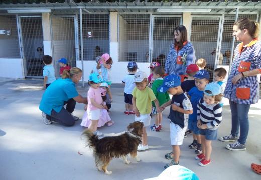 Visita dos nenos e nenas da escola infantil municipal á canceira de Ordes