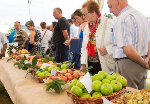 A Feira Rural volverá premiar os mellores lotes de froita do país