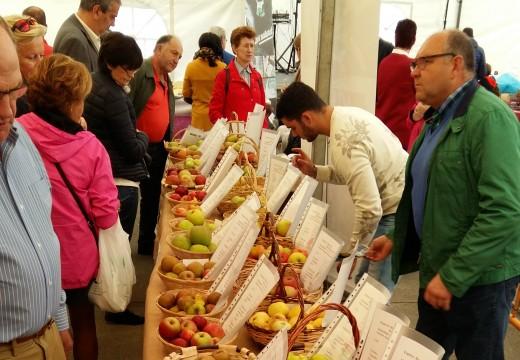A AGFA do Eume leva a froita de San Sadurniño aos principais eventos agrogandeiros da provincia