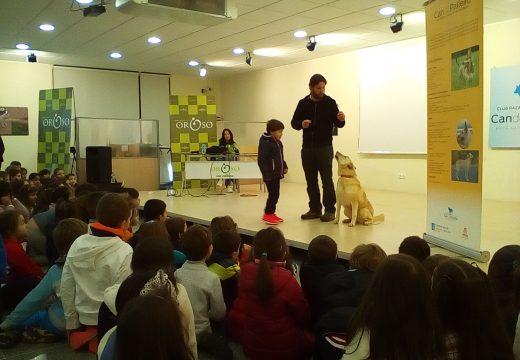 Os escolares de Oroso aprenden a importancia de coidar ben as súas mascotas en obradoiros do Club de Raza Can de Palleiro