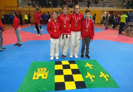 Campeonato galego cadete taekwondo 2017