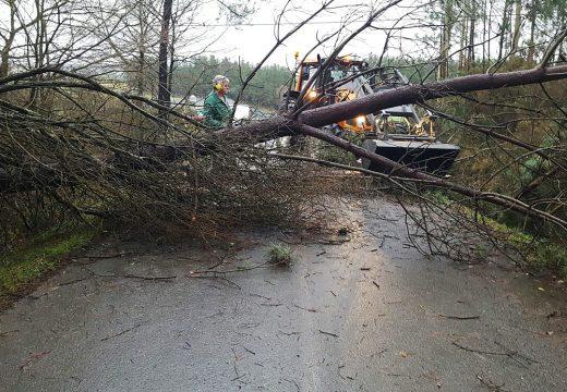 O temporal deixou sen luz e teléfono a varias localidades de Frades e levantou parte das cubertas de varias explotacións gandeiras