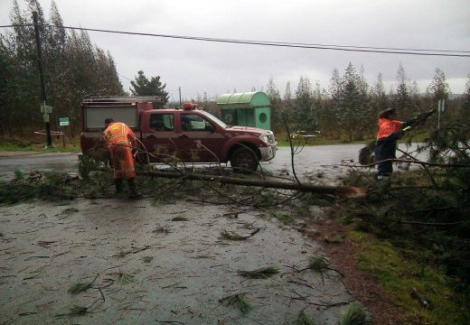 O temporal deixa liñas de tendido eléctrico e telefónico partidas e numerosas árbores caídas nas estradas e pistas de Oroso