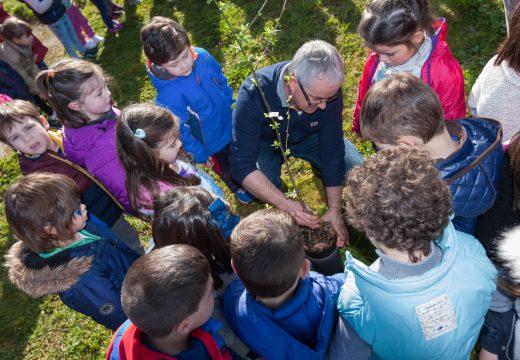 A rapazada do CPI de San Sadurniño axuda a plantar máis froiteiras do país na horta da Cortiña
