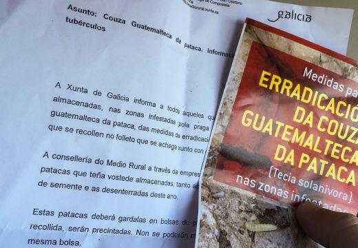 A Xunta enviará ás casas información sobre a loita contra a praga da pataca