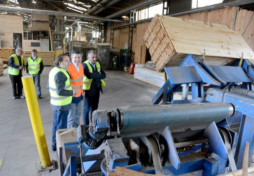 A Xunta impulsou o sector forestal na Coruña con 3,2 millóns de euros en axudas para proxectos tecnolóxicos e industriais