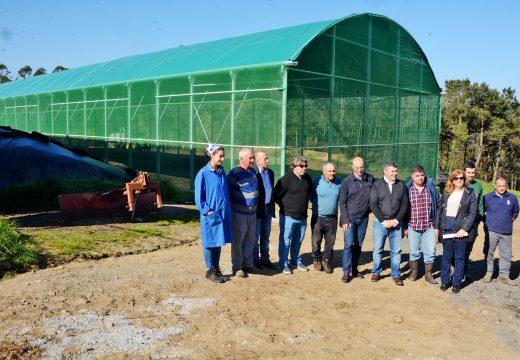 O apoio da Xunta ao Medio Rural propiciou que o ano pasado 164 mozos da provincia convertéranse en gandeiros e agricultores