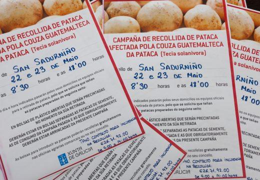 A Xunta retirará as patacas de San Sadurniño o 22 e o 23 de maio
