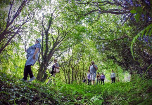 A Cultura e as actividades ao aire libre protagonizan a oferta de San Sadurniño para a fin de semana