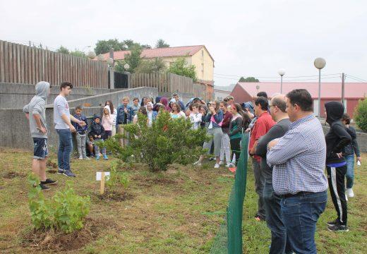 O alumnado do CPI Ponte Carreira presenta á veciñanza de Frades os beneficios da agricultura ecolóxica e o seu horto escolar