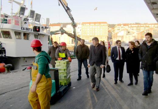 Inspectores de Saúde Pública garanten a diario as condicións sanitarias do peixe e do marisco que se subasta na lonxa de Ribeira