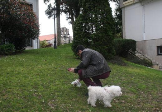 Cambre sanciona a unha trintena de donos de cans por incumprir a ordenanza de animais no 2017