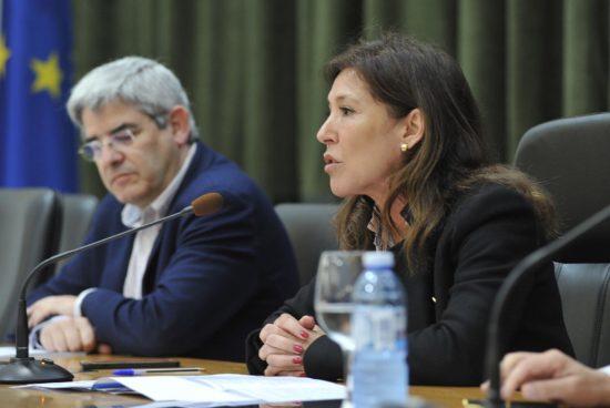 Os concellos galegos xa poden solicitar as axudas para a protección e coidado de animais abandonados