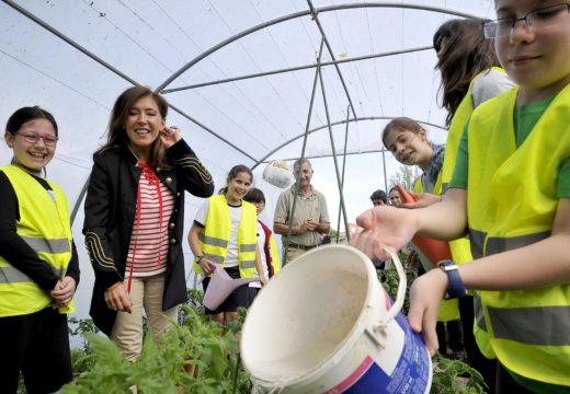Medio Ambiente propón a creación dun comando verde por centro educativo para afrontar os retos e valores de sustentabilidade