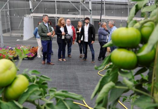 A orde de axudas da Xunta para plans de mellora e incorporación de mozos nas explotacións agrarias mobilizou na provincia da Coruña un investimento de 22 millóns de euros