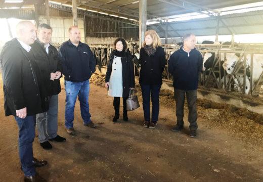 As axudas da PAC para agricultores e gandeiros mobilizaron o ano pasado 8,3 millóns de euros en máis de 2.000 explotacións na comarca da Bergantiños-Costa da Morte