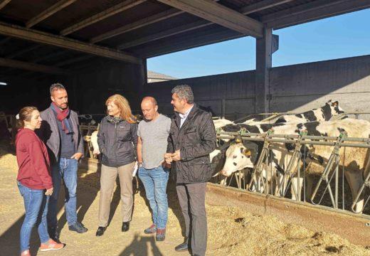 As axudas da PAC para agricultores e gandeiros mobilizaron o ano pasado en Mazaricos 3,4 m€ en 635 explotacións