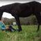 Cata, a rapaza que empatiza cos cabalos