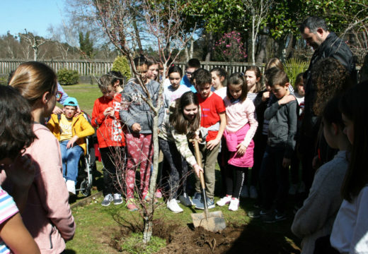 O Concello de Ordes celebra o Día Internacional dos Bosques coa poboación escolar