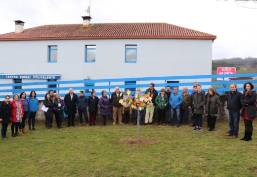 """O Concello de Brión conmemora o Día Internacional da Muller coa figueira símbolo da iniciativa """"Mulleres medrando como árbores"""""""