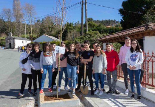 O alumnado da ESO celebra o Día Mundial Forestal