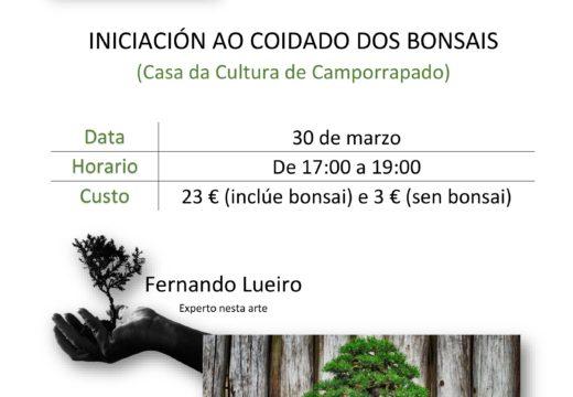O Concello de Boqueixón organiza un Obradoiro de iniciación ao coidado dos bonsáis