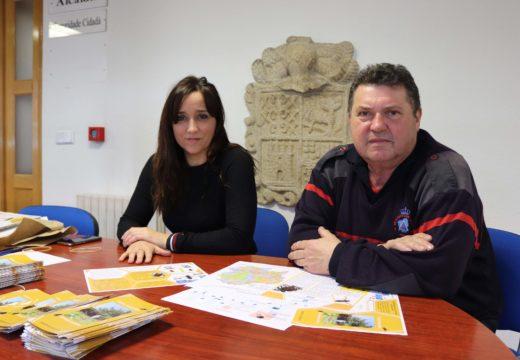 O Concello de Noia organiza unha nova campaña contra a avespa velutina e convoca unha xuntanza para a entrega de trampas