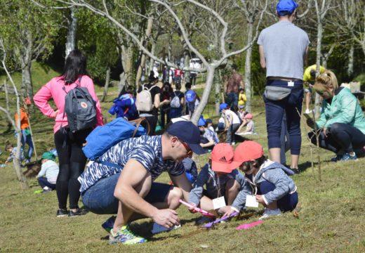 Os pequenos pasárono en grande durante a celebración do Día da Árbore en San Roque