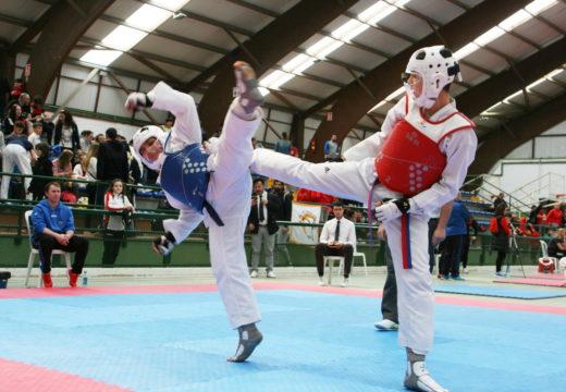 Ordes acolleu o Campionato Galego de Taekwondo