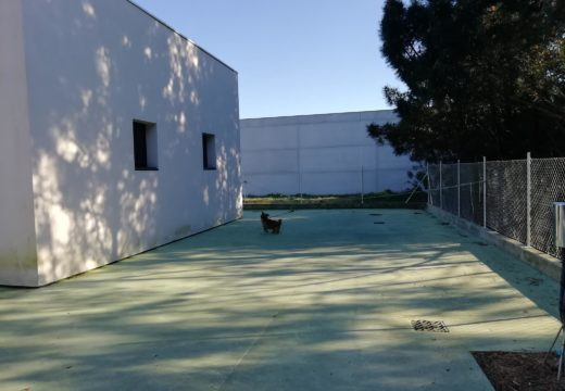 O Concello de Noia traballa na habilitación dun refuxio para animais abandonados