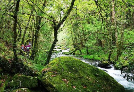 Galicia Senderismo organiza este sábado unha segunda edición da ruta circular de 20 km polo Río Vilacoba (Lousame)