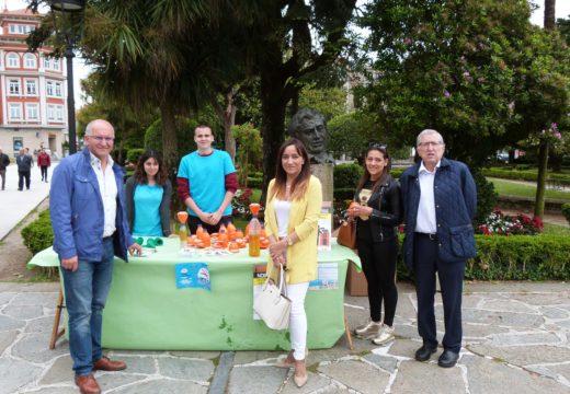 Centos de veciños e veciñas participan nas actividades organizadas polo Concello de Noia para conmemorar o Día do Medio Ambiente