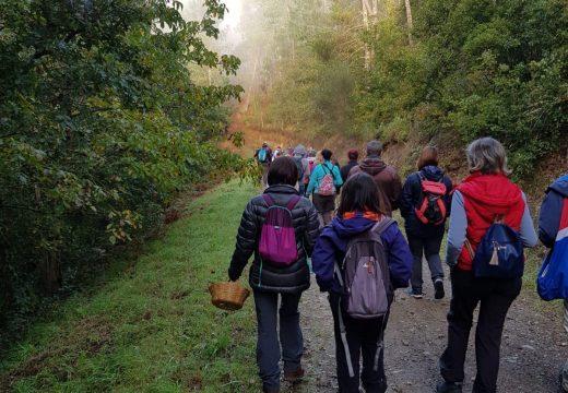 Arredor de 100 sendeiristas, o fin de semana na ruta de 'Goza do Ulla' no Concello de Touro