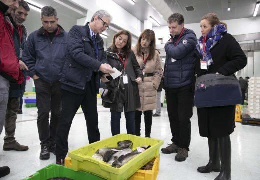 O Goberno local apoiará a Lonxa na creación dunha marca propia que diferencie o peixe que arriba á cidade
