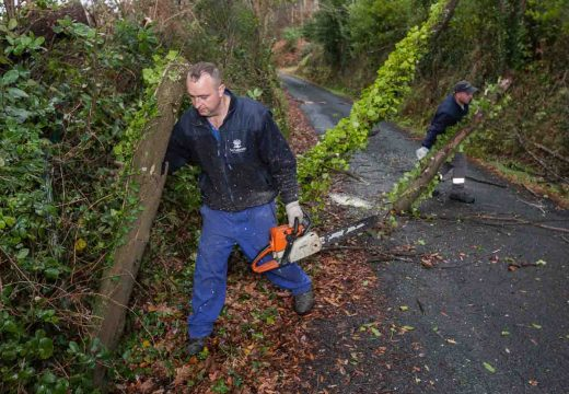 O Concello de San Sadurniño dá de prazo ata o 31 de xaneiro para cortar árbores que «pinguen» sobre as pistas municipais