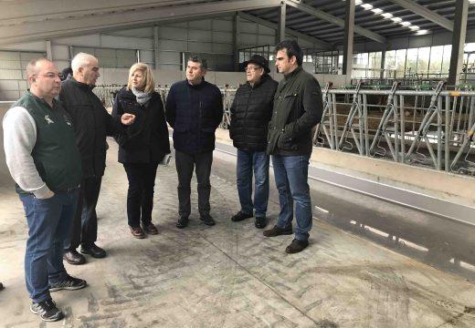 A Xunta apoiou a posta en marcha dunha explotación gandeira en San Sadurniño con 450 vacas en réxime asociativo