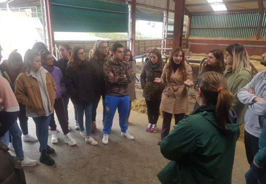 Política Social fomenta o coñecemento das oportunidades que ofrece o rural á mocidade a través do programa Emprural