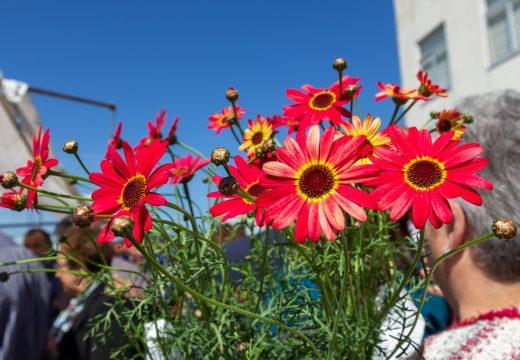 O Concello de San Sadurniño pon en marcha o certame «San Sadurniño en flor»