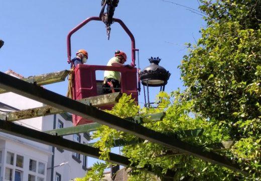 O Concello de Noia aplica un ano máis o tratamento preventivo do picudo nas palmeiras da Alameda