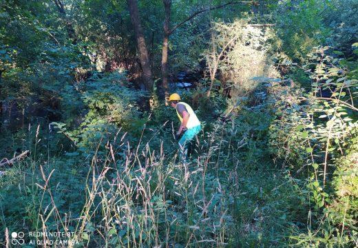 A Xunta executa traballos de limpeza nos treitos interurbanos do Río Ulla e afluentes ao seu paso polos concellos da Estrada, Teo, Vedra, Vila de Cruces, Boqueixón e Touro