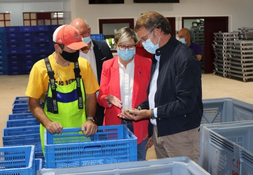 Feijóo reedita o compromiso da Xunta co sector marisqueiro que, a pesar da pandemia, facturou entre xullo e agosto un 10% máis con respecto á media dos últimos 10 anos