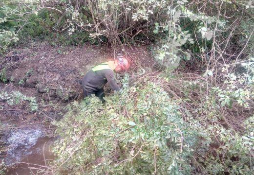 A Xunta executa actuacións de conservación e limpeza en catro ríos do concello de Arteixo