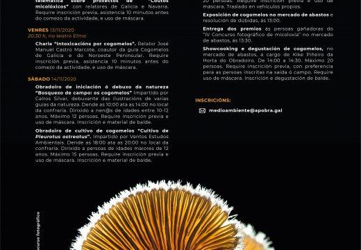 Unha nova edición das Xornadas Micolóxicas da Pobra pon en valor os cogomelos